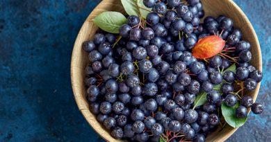 fructe aronia