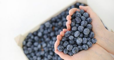 fructe si legume bogate in antioxidanti